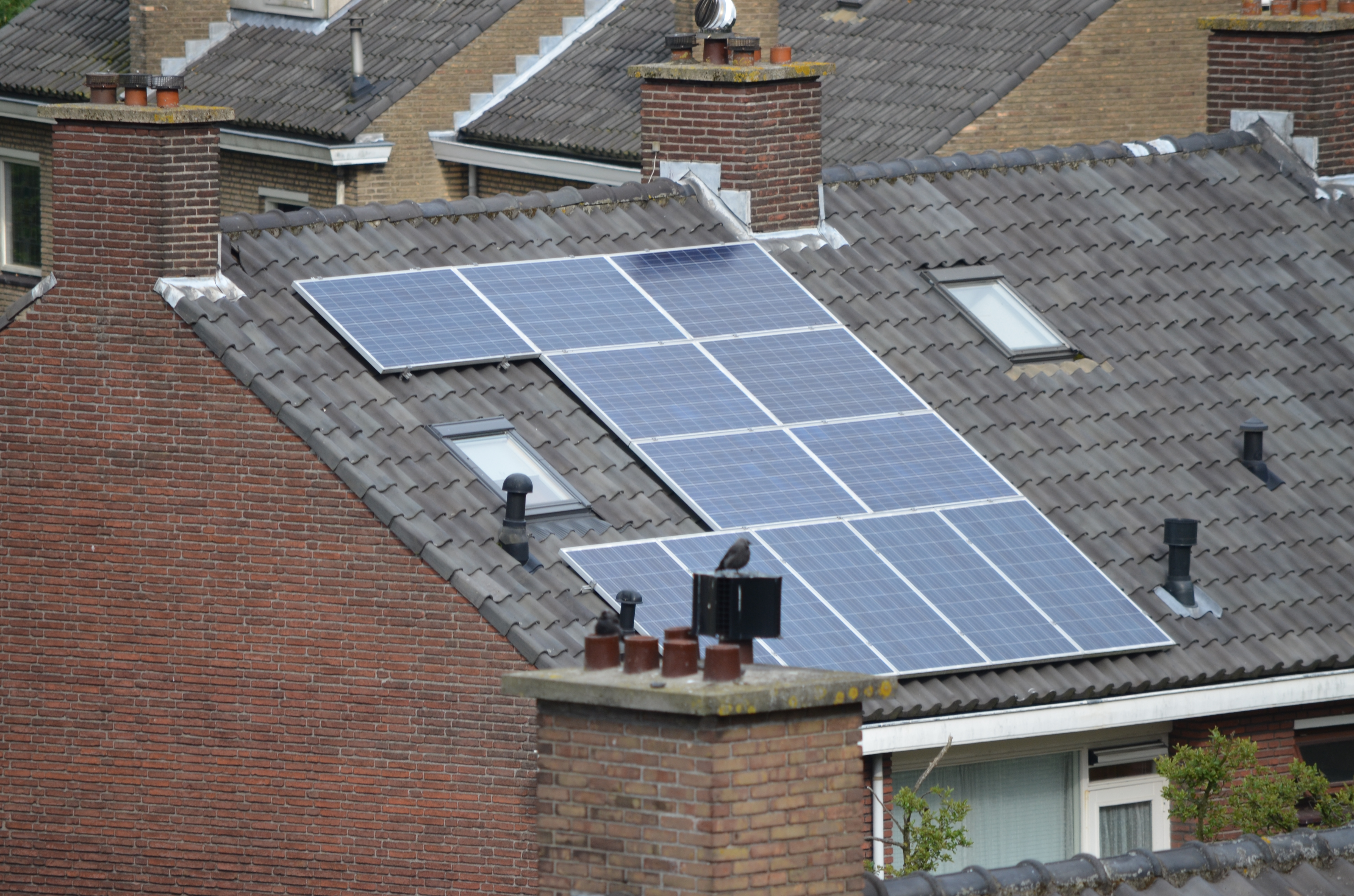 Solar_panel_on_a_roof_The_Netherlands_2