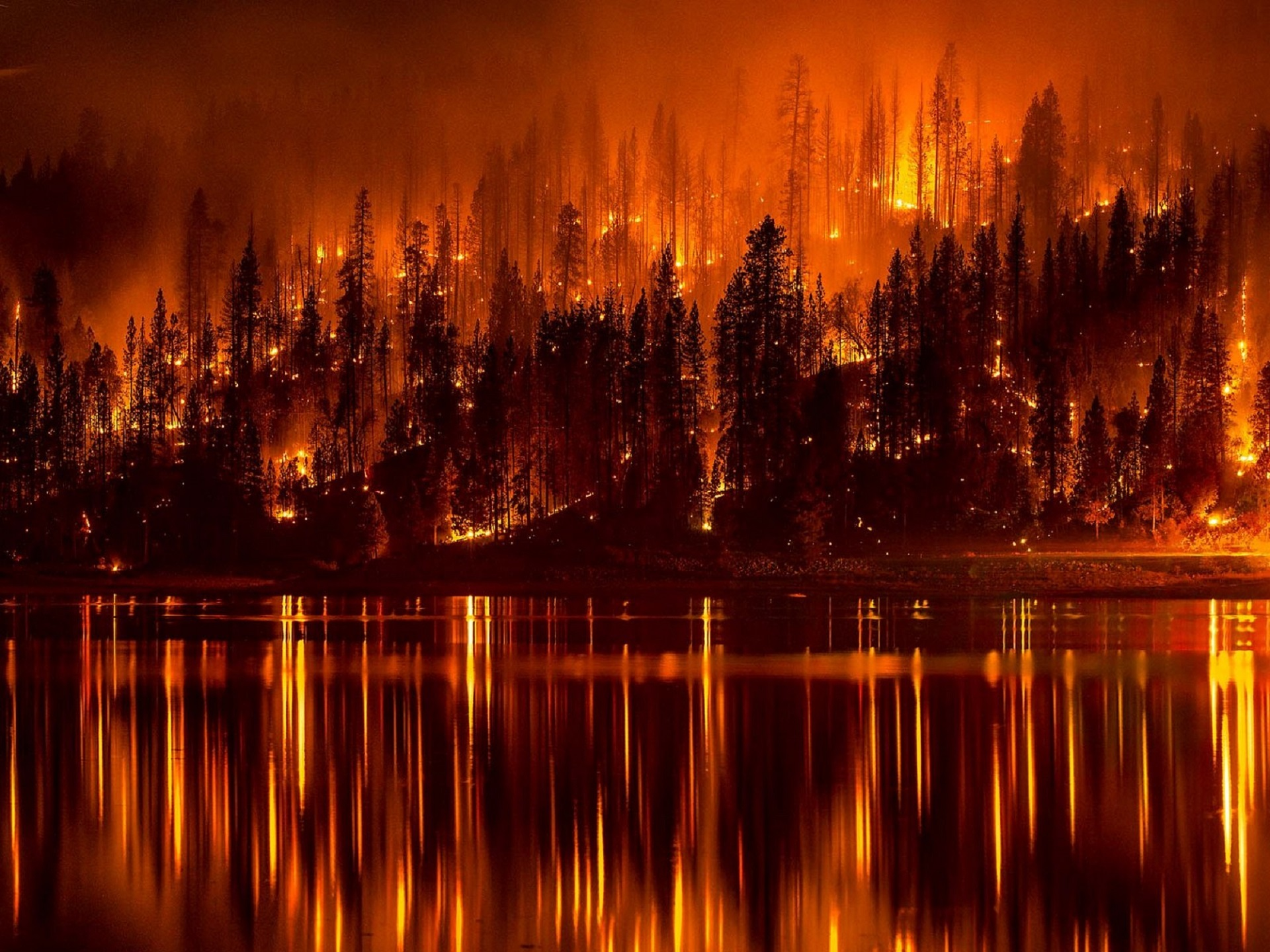 Image credit: Pixaby user 'skeeze' https://pixabay.com/en/forest-fire-flames-burning-water-991479/