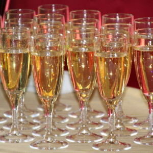 The Champagne Socialist Fallacy