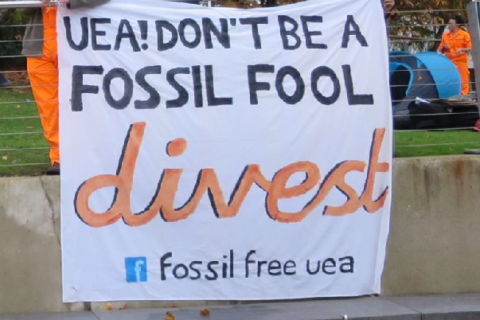 BREAKING: Half of all UK universities have now divested from fossil fuels